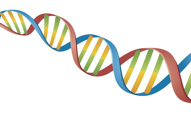 the use of dna evidence Dna technology is rapidly becoming the method of choice when it comes to linking individuals with crime scenes and criminal assaults dna evidence is increasingly used in criminal trials, and has also become a powerful tool in proving the innocence of wrongly-convicted prisoners (for more on dna .